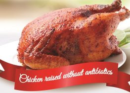 A safer, healthier alternative: Bounty Agro brings no antibiotic ever chickens to the market